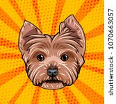 yorkshire terrier dog portrait. ... | Shutterstock .eps vector #1070663057