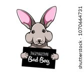 rabbit criminal. arrest photo.... | Shutterstock .eps vector #1070664731