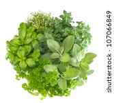 variety fresh mediterranean... | Shutterstock . vector #107066849