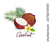coconut and plumeria flower... | Shutterstock .eps vector #1070670545