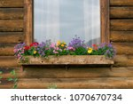 Colorful Flowers In A Window...