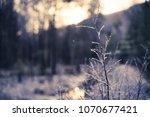 beautiful norwegian winter... | Shutterstock . vector #1070677421