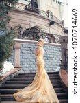 bride in a wedding dress... | Shutterstock . vector #1070714669