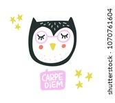 hand drawn illustration of owl...   Shutterstock .eps vector #1070761604