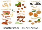 set of nuts isolated on white... | Shutterstock .eps vector #1070770661