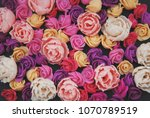 mix of pink and peach fake... | Shutterstock . vector #1070789519