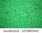 lemna or common duckweed...   Shutterstock . vector #1070801441