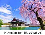 view of the beautiful cherry... | Shutterstock . vector #1070842505
