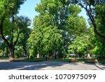 city park in summer  bright...   Shutterstock . vector #1070975099