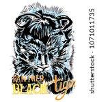 black tiger or panther junior... | Shutterstock .eps vector #1071011735