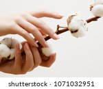 hand skin care. closeup image... | Shutterstock . vector #1071032951