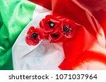 flower poppy and italy flag. | Shutterstock . vector #1071037964