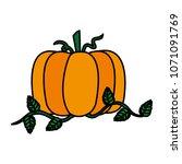 color organic pumpkin vegetable ...   Shutterstock .eps vector #1071091769