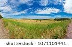picturesque rural landscape... | Shutterstock . vector #1071101441
