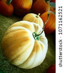 Beige Pumpkin With Twisted Stem