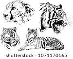 vector drawings sketches... | Shutterstock .eps vector #1071170165