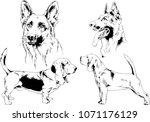 vector drawings sketches... | Shutterstock .eps vector #1071176129