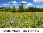 spring landscape. mountain... | Shutterstock . vector #1071196547