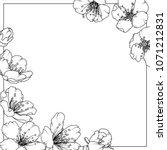 cherry sakura aliche tree... | Shutterstock .eps vector #1071212831
