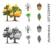 burning tree  palm  acorn  dry... | Shutterstock .eps vector #1071220499