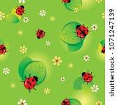 illustration vector of ladybugs ...   Shutterstock .eps vector #1071247139