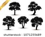collection  tree silhouette... | Shutterstock .eps vector #1071255689