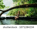 a young woman in blue lagoon in ... | Shutterstock . vector #1071284234