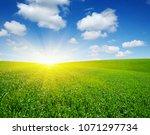 green meadow under blue sky... | Shutterstock . vector #1071297734