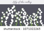 may lily. vector illustration... | Shutterstock .eps vector #1071322265