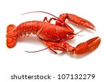 Cooked European Common Lobster...