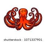 octopus engraving. vintage... | Shutterstock . vector #1071337901