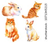 cute little red kitty and bunny ... | Shutterstock . vector #1071345215