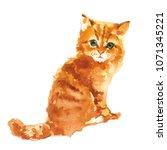 cute little kitty watercolor... | Shutterstock . vector #1071345221