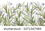 botanical decor. botanical... | Shutterstock . vector #1071367484