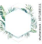hexagon tropical plants frame.... | Shutterstock . vector #1071383111