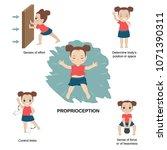 vector illustration of human... | Shutterstock .eps vector #1071390311