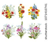 compositions of wild flowers...   Shutterstock .eps vector #1071410741