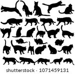 icon  silhouette cat  set ... | Shutterstock .eps vector #1071459131