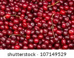 Ripe red Cherry. Natural background - stock photo