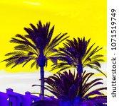 palm fashion art. tropical mood | Shutterstock . vector #1071519749