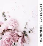 beautiful  tender fresh...   Shutterstock . vector #1071571151