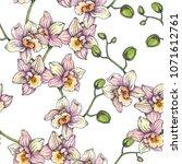 vector vintage seamless pattern ... | Shutterstock .eps vector #1071612761