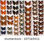 butterflies on white | Shutterstock . vector #107165411