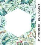 hexagon tropical plants frame.... | Shutterstock . vector #1071706895