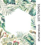 hexagon tropical plants frame.... | Shutterstock . vector #1071706901