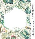 hexagon tropical plants frame.... | Shutterstock . vector #1071706901
