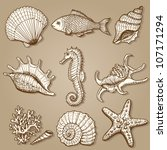 sea collection. original hand... | Shutterstock .eps vector #107171294