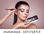 makeup artist applies eye... | Shutterstock . vector #1071718715