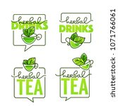 herbal drinks vector line art... | Shutterstock .eps vector #1071766061