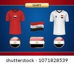 football egypt jersey. vector...   Shutterstock .eps vector #1071828539